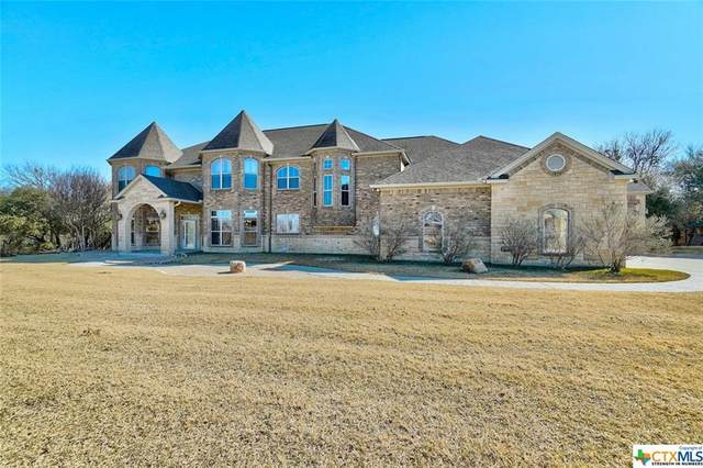 8833 Fm 1123, Belton, TX 76513 (MLS #425436) :: Kopecky Group at RE/MAX Land & Homes