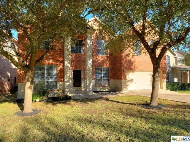 20610 Meandering Circle, San Antonio, TX 78258 (MLS #425621) :: The Zaplac Group