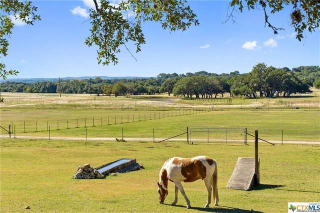 3758 N Hwy 281, Blanco, TX 78606 (MLS #425669) :: The Zaplac Group