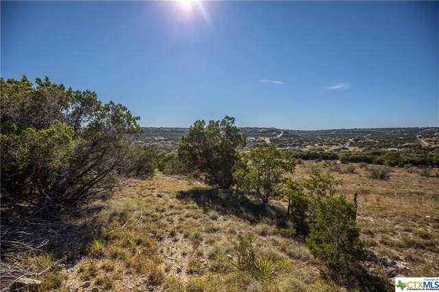 TBD Whitewater Drive, Bertram, TX 78605 (#425741) :: First Texas Brokerage Company