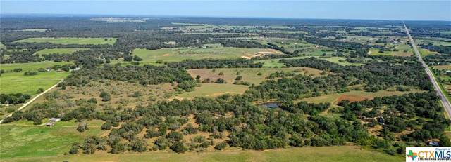 4043 State Highway 123 N. (Tr 2), Stockdale, TX 78160 (MLS #425790) :: The Myles Group