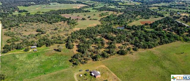 4033 State Highway 123 N. (Tr 3), Stockdale, TX 78160 (MLS #425792) :: The Myles Group
