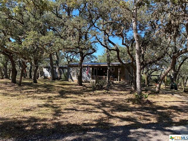 56 Scenic Loop Drive, Goliad, TX 77963 (MLS #425813) :: RE/MAX Family