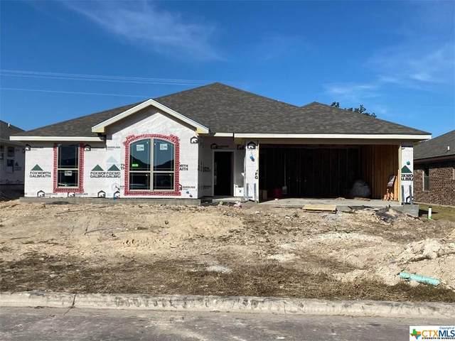 416 Damascus Drive, Belton, TX 76513 (MLS #425864) :: Carter Fine Homes - Keller Williams Heritage