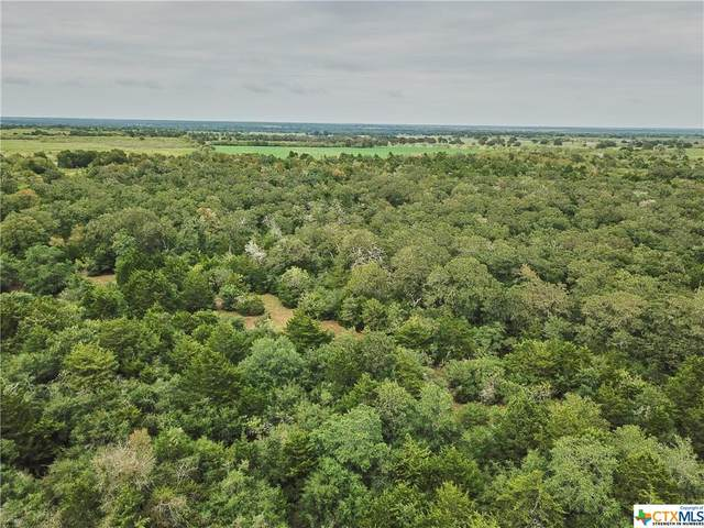 TBD 2 County Rd 444, Gonzales, TX 78629 (MLS #425959) :: RE/MAX Family
