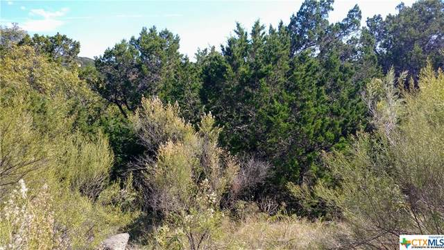 5525 Chimney Rock, Canyon Lake, TX 78133 (MLS #425963) :: Vista Real Estate