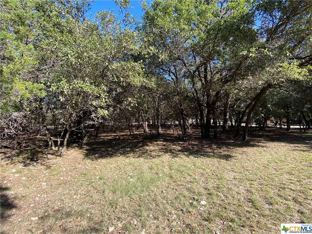 2226 Moon Valley Road, Harker Heights, TX 76548 (MLS #426119) :: Vista Real Estate