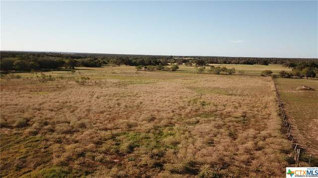 TBD Tract E Cr 423, Stockdale, TX 78610 (MLS #426145) :: The Myles Group