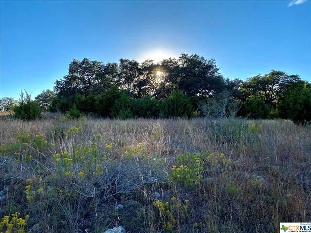 23481 N Cranes Mill Road, Canyon Lake, TX 78133 (#426165) :: First Texas Brokerage Company