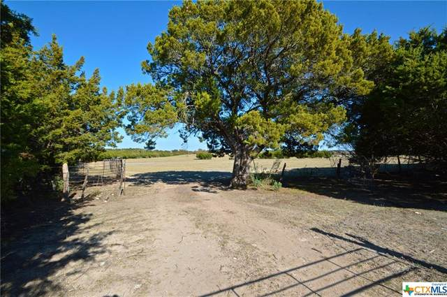 652 Fm 581, Lometa, TX 76853 (MLS #426486) :: The Myles Group
