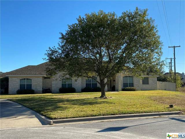 2207 Grizzly Trail, Harker Heights, TX 76548 (MLS #426688) :: The Zaplac Group