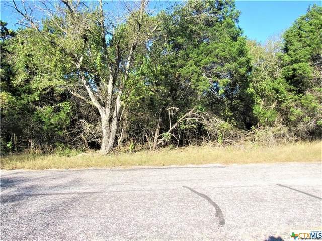 6592 Hood Trail, Belton, TX 76513 (MLS #426691) :: Brautigan Realty
