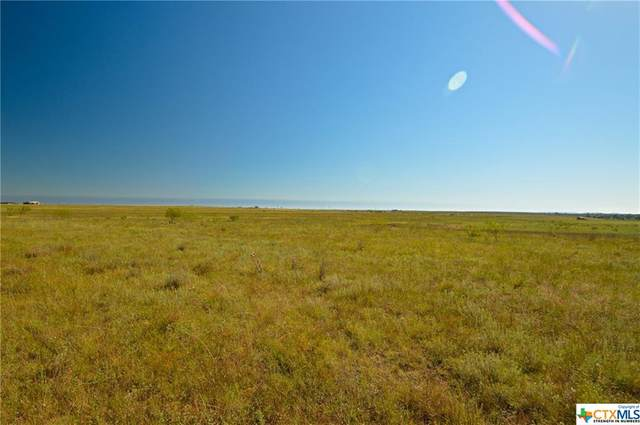0 County Road 2800, Lometa, TX 76853 (MLS #426694) :: The Myles Group