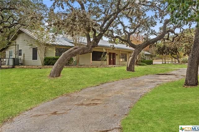 1 Encinitas Drive, Johnson City, TX 78636 (MLS #426711) :: RE/MAX Family