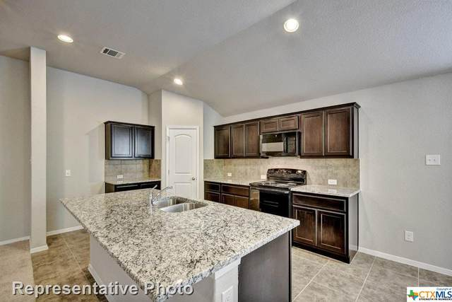 359 Spiny Lizard Lane, San Marcos, TX 78666 (MLS #426740) :: The Zaplac Group