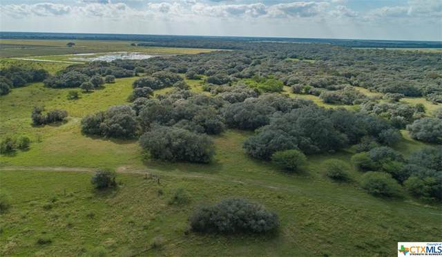 13146 County Road 360, Louise, TX 77455 (MLS #426760) :: The Myles Group