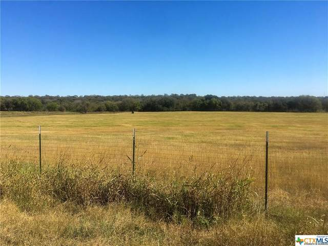 TBD Willow Avenue, Luling, TX 78648 (MLS #426845) :: Berkshire Hathaway HomeServices Don Johnson, REALTORS®