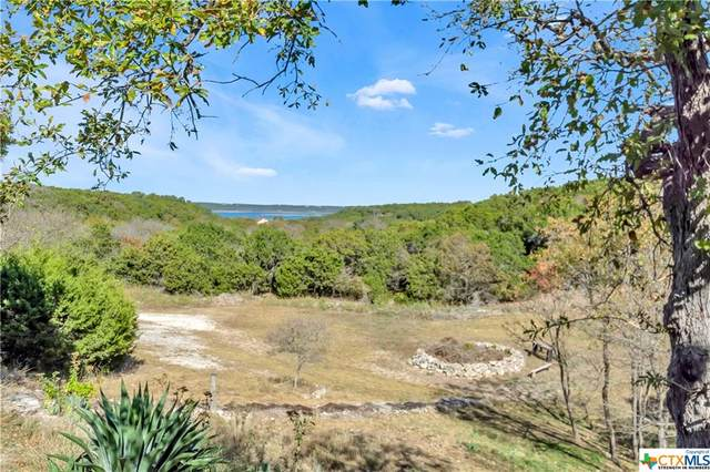 9859 Hodge Canyon Drive, Salado, TX 76571 (MLS #426851) :: The Barrientos Group