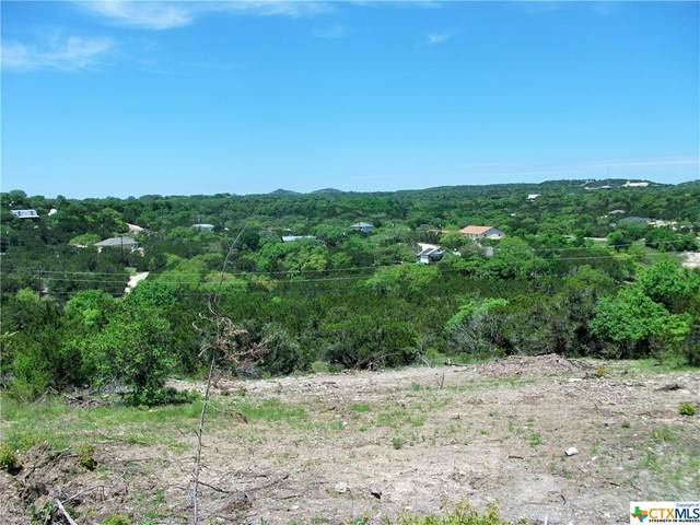 651 Hillside Drive, Spring Branch, TX 78070 (MLS #427081) :: Vista Real Estate