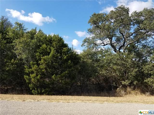 273 Summerside Drive, New Braunfels, TX 78132 (MLS #427101) :: RE/MAX Family