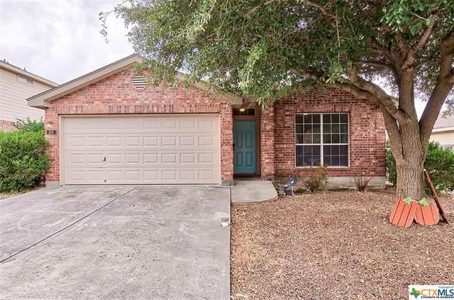 305 Ibis Falls Drive, New Braunfels, TX 78130 (MLS #427130) :: RE/MAX Family