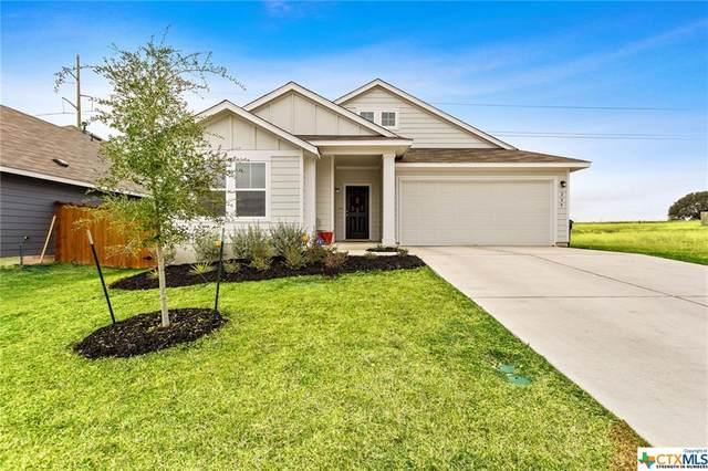 229 Wild Sage Lane, Liberty Hill, TX 78642 (MLS #427181) :: The Barrientos Group