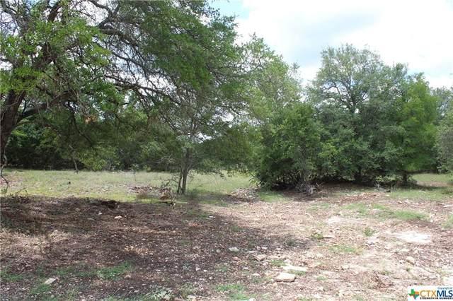 7702 Shiny Top Ranch Shiny Top Ranch Lane, Salado, TX 76571 (MLS #427347) :: The Zaplac Group