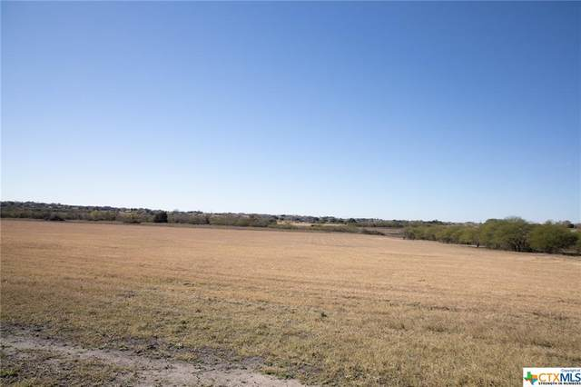 Lot 10 Shiner Hillside, Shiner, TX 77984 (MLS #427380) :: The Zaplac Group