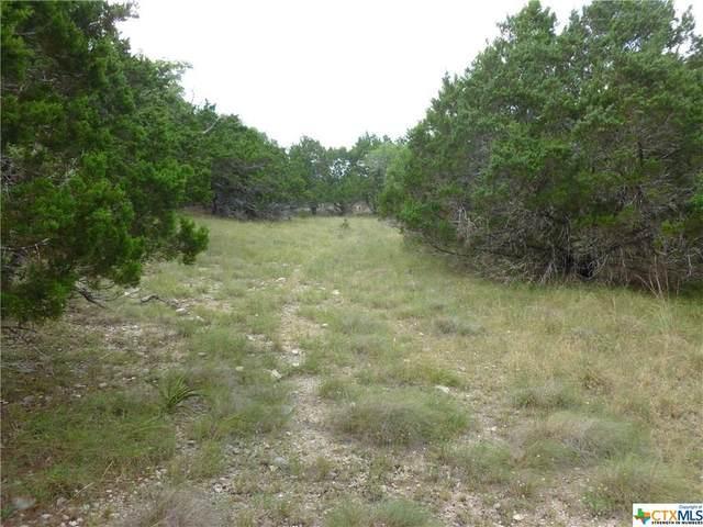 2469 Comal Springs, Canyon Lake, TX 78133 (#427425) :: First Texas Brokerage Company