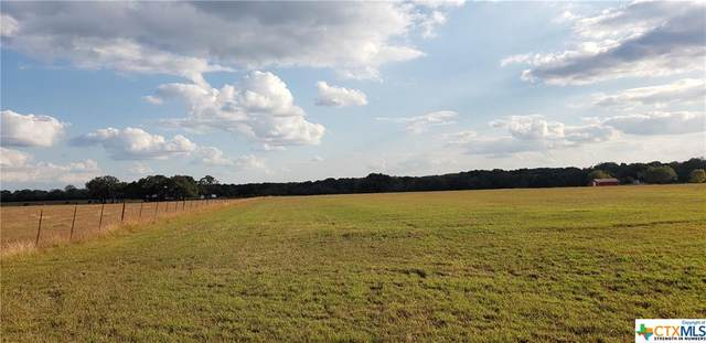 Tract A2 C R 208, Hallettsville, TX 77964 (MLS #427505) :: RE/MAX Family