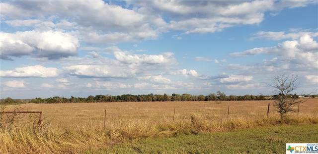 Tract B1 County Road 212, Hallettsville, TX 77964 (MLS #427516) :: RE/MAX Family