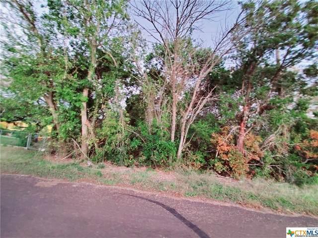 2649 Vista Trail, Belton, TX 76513 (MLS #427625) :: The Barrientos Group