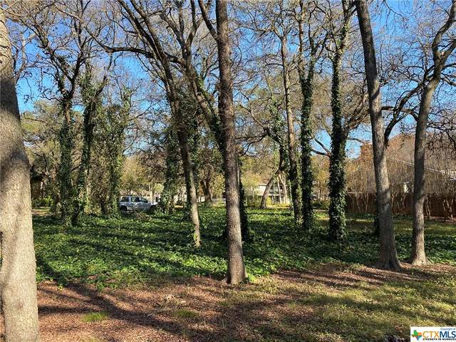 TBD Castle Dale Drive, Austin, TX 78748 (MLS #427640) :: The Barrientos Group