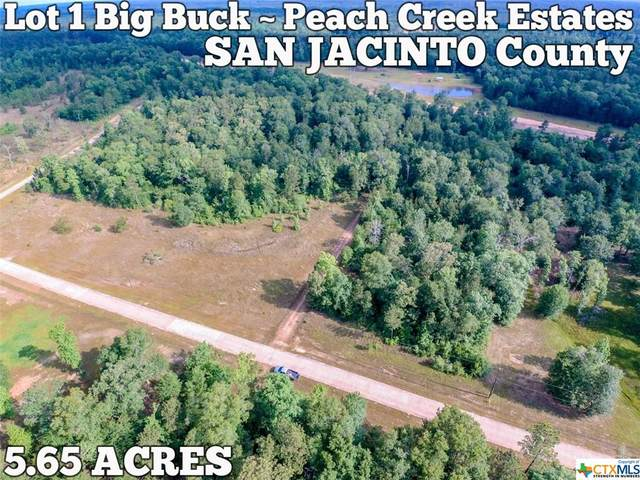 Lot 1 Big Buck Drive, Cleveland, TX 77328 (#428091) :: First Texas Brokerage Company