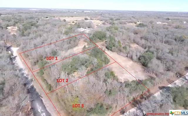 4401 Seawillow Road, Lockhart, TX 78644 (#428715) :: Realty Executives - Town & Country