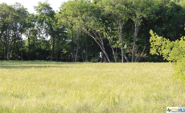 TBD Fm 1963, Rosebud, TX 76570 (MLS #428795) :: Kopecky Group at RE/MAX Land & Homes