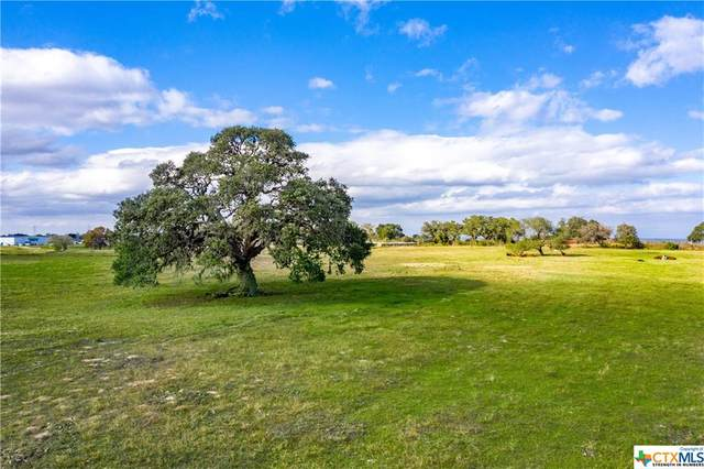 1440 Old Goliad - Tract A Road, Cuero, TX 77954 (MLS #429065) :: The Zaplac Group