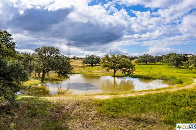1440 Old Goliad - Tract B Road, Cuero, TX 77954 (MLS #429066) :: The Zaplac Group