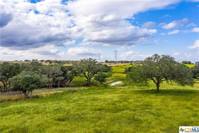 1440 Old Goliad - Tract C Road, Cuero, TX 77954 (MLS #429069) :: The Zaplac Group