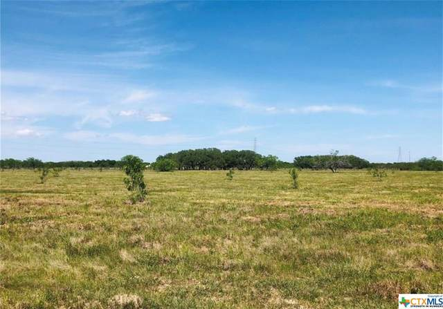 12587 Us Hwy 59, Victoria, TX 77905 (MLS #429088) :: Kopecky Group at RE/MAX Land & Homes