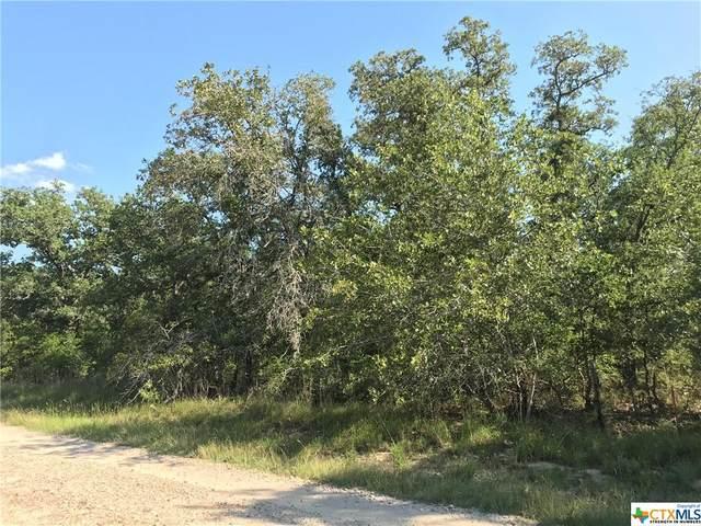 185 Turkey Tree Trail Road, Seguin, TX 78155 (MLS #429145) :: The Real Estate Home Team