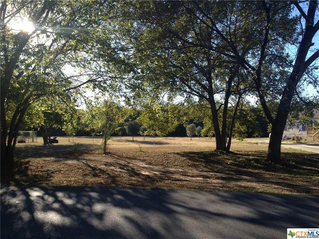 4040 Sutherland Springs, Seguin, TX 78155 (MLS #429160) :: The Zaplac Group