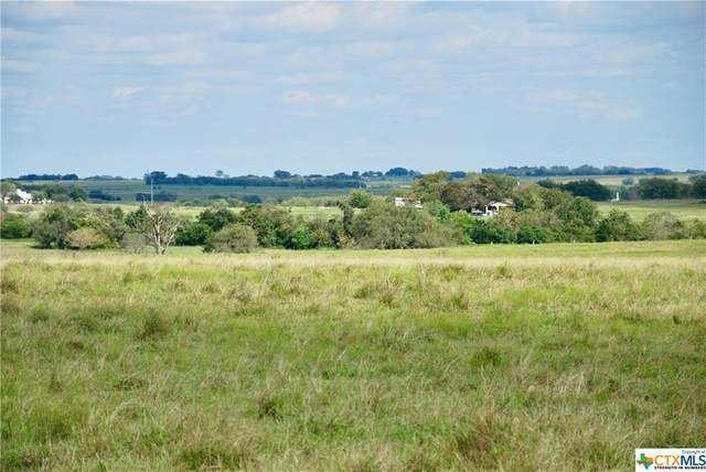 Tract 2 County Road 291, Shiner, TX 77984 (MLS #429298) :: The Zaplac Group