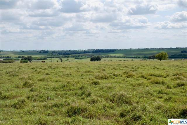 Tract 3 County Road 291, Shiner, TX 77984 (MLS #429299) :: The Zaplac Group