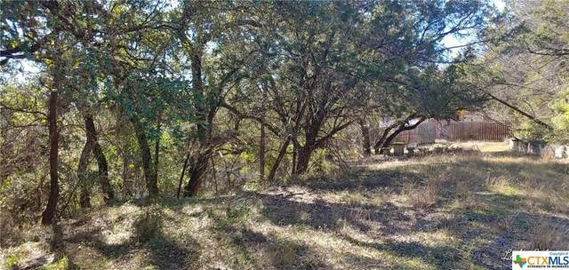 TBD Turkey Tree Road, Spicewood, TX 78669 (MLS #429314) :: Berkshire Hathaway HomeServices Don Johnson, REALTORS®