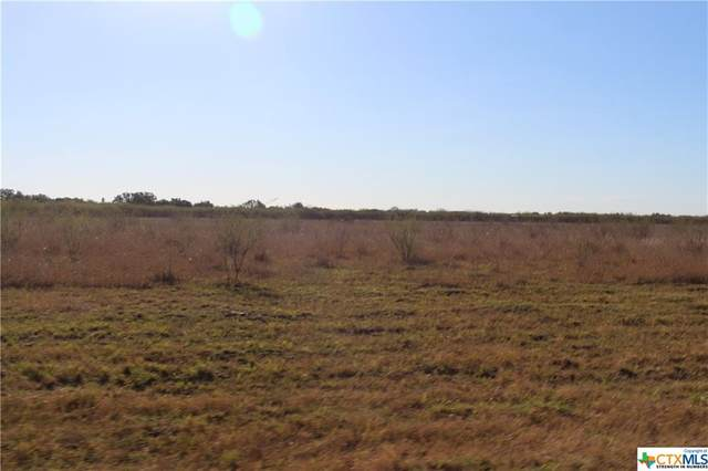 Tract 3 Howard Ln, Victoria, TX 77905 (MLS #429456) :: Brautigan Realty