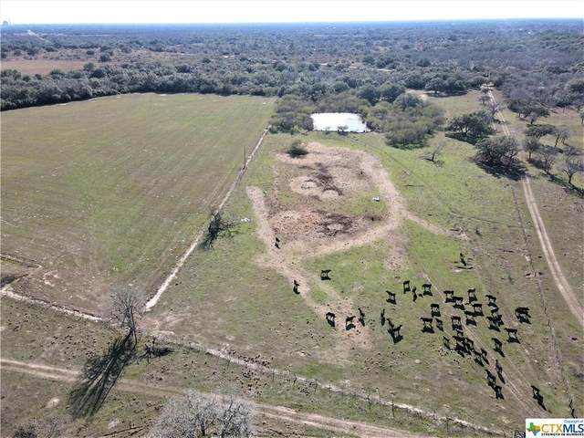 000 Fannin Road, Fannin, TX 77960 (MLS #429465) :: RE/MAX Land & Homes