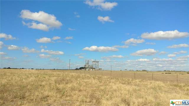 1360 Fm 1466 Road, Coupland, TX 78615 (MLS #429538) :: Kopecky Group at RE/MAX Land & Homes