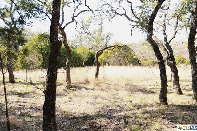 TBD Bcr 111, Lampasas, TX 76550 (MLS #429617) :: The Real Estate Home Team