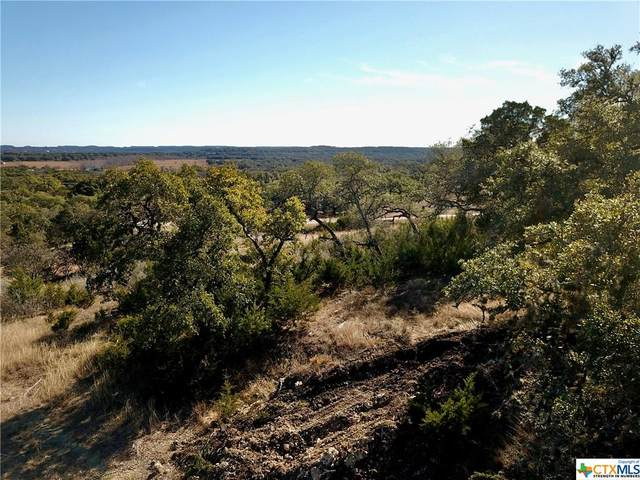 2943 Campestres, Spring Branch, TX 78070 (MLS #429636) :: Vista Real Estate
